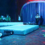Der Zirkusdirektorschüler