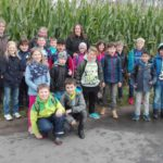 In den Maisfeldern